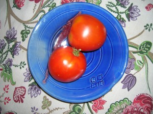 tomatoes.sept17